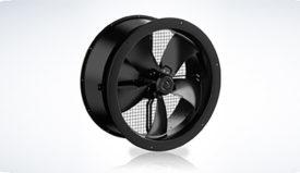 EC-fans-111218-lg.jpg