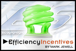 Efficiency Incentives