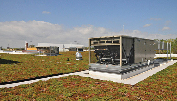 green roof and premium efficiency air cooled DX